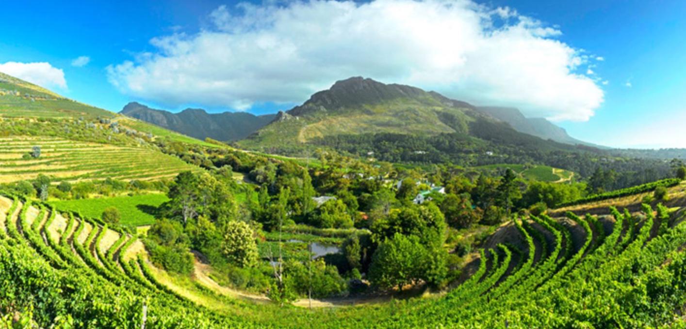 Vinsmagning med gårdbesøgning fra Eagles' Nest Wines